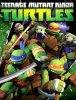 Черепашки-ниндзя / Черепашки Мутанты Ниндзя / Teenage Mutant Ninja Turtles (2 сезон) (2013)