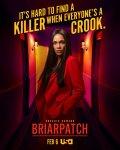 Терновый куст / Briarpatch (2020-...)