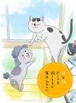 Весёлые дни с кошкой и собакой / Inu to Neko Docchi mo Katteru to Mainichi Tanoshii (2020)